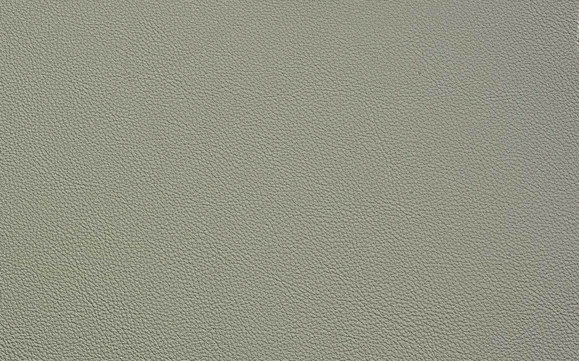 Fossil Grey - #10094