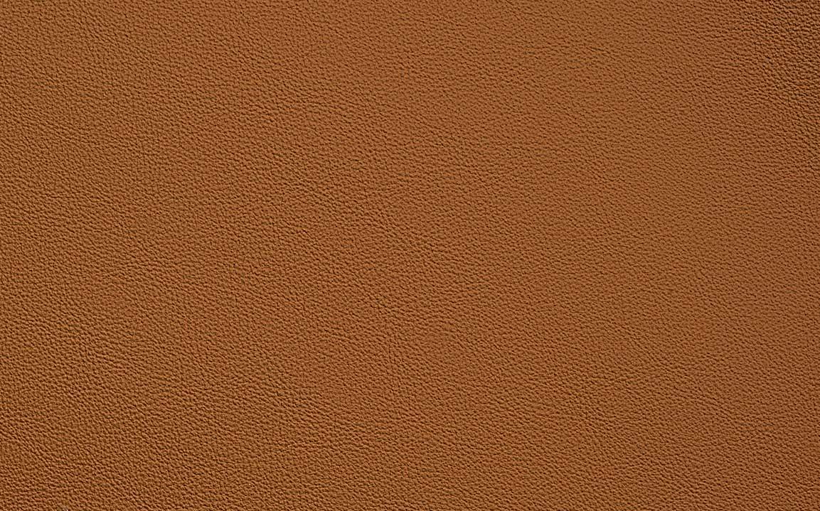 Desert Orange - #10040
