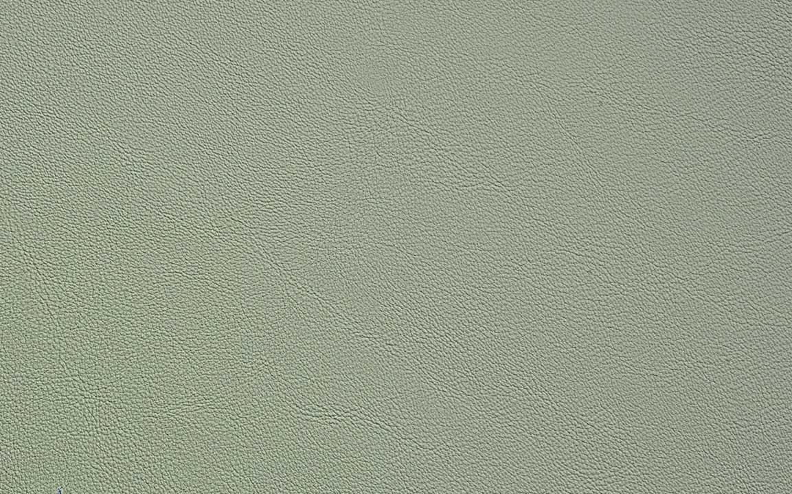 Pastel Sage - #10093